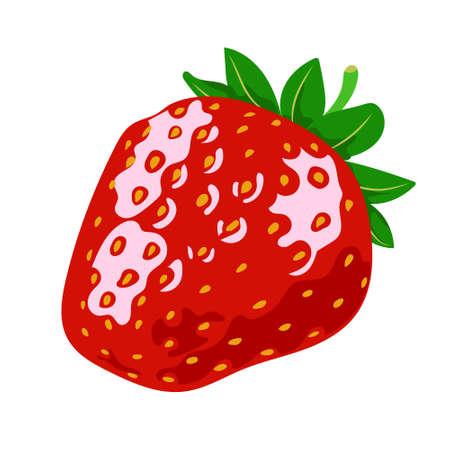 Red ripe strawberries, summer seasonal fruits, fruit print, juicy red strawberries, vector illustration in flat style