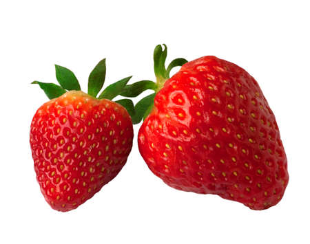 chandler: Photography of two strawberries isolated.