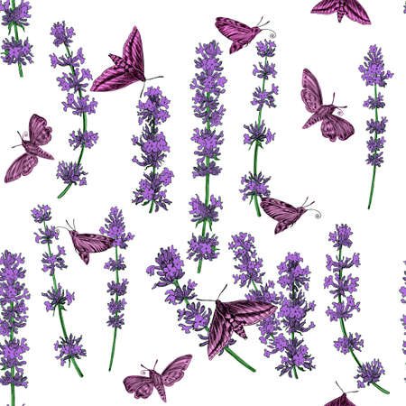 paiting: Seamless floral pattern with lavender. Hand paiting. Raster illustration.