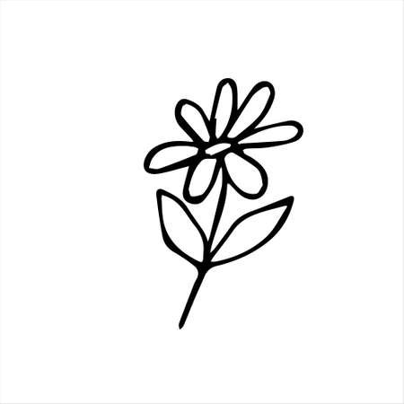 One hand-drawn daisy. Doodle vector illustration. Isolated on a white background, black and white graphics