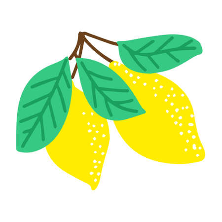 Cute lemons, hand-drawn in a doodle style. Vector illustration for children's books, postcards in a simple sweatshirt style by hand. Vector illustration in the Scandinavian style Illusztráció