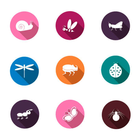 crawly: A set of colorful icons isolated insects for your design. Vector