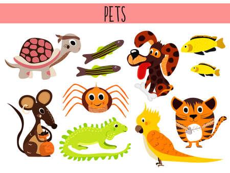 jaszczurka: Zestaw cute kreskówek zwierząt i ptaków zwierząt. Żółw, pająk, kot, pies, ryby akwariowe, iguany, jaszczurki, myszy i papug. ilustracji wektorowych