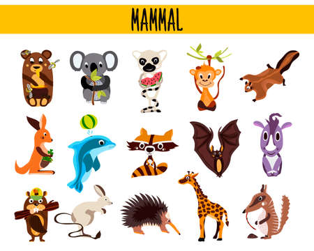 mammals: Set of Cute cartoon Animals mammals living in different parts of the world forests, seas and tropical jungles .Koala, lemur, monkey, bear, rhinoceros, beaver, anteater, Rhino . Vector illustration Illustration