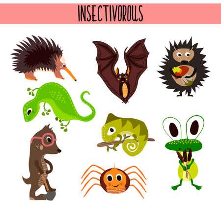 jaszczurka: Cartoon Zestaw cute zwierząt owadożernych mieszkających w różnych częściach świata i lasów tropikalnych dżungli .A bat, jaszczurka, jeż, mola, pająk, kameleon i żaby zabawy. Ilustracji wektorowych