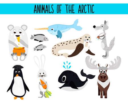 pajaro caricatura: Conjunto de animales lindos de la historieta y las aves del Ártico en un fondo blanco. Oso polar, lobo ártico, liebre, morsa, pingüino, narval, reno, pescado de mar. Ilustración vectorial
