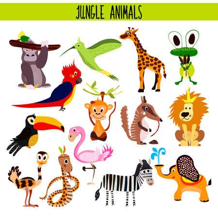 Cartoon conjunto de animales lindos del mono, león, cebra, elefante, serpiente y Toucan Pájaro, Flamenco, tarareando la selva tropical de aves y bosques húmedos aislados sobre fondo blanco. Ilustración vectorial