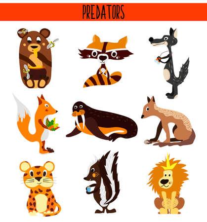 zorrillo: Cartoon conjunto de animales depredadores lindos que viven en diferentes partes de los bosques del mundo, los mares y las selvas tropicales. Cocodrilo. mofeta, oso, lobo, zorro, mapache, morsas, leones. Ilustración vectorial Vectores