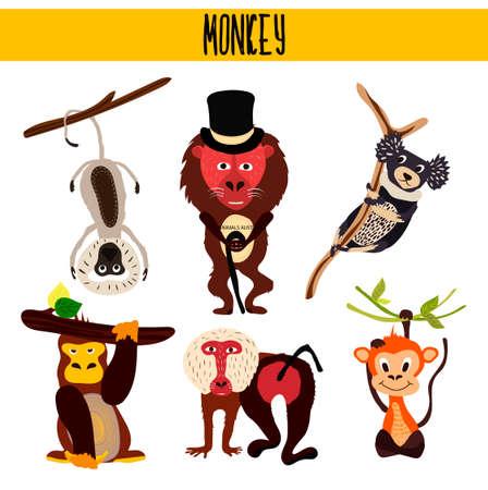 chimpances: Cartoon Juego de monos lindos animales que viven en diferentes partes de los bosques del mundo y la selva tropical .Macaque, gorila, Yukari, mono verde, babuino, indri, chimpancés. Ilustración vectorial