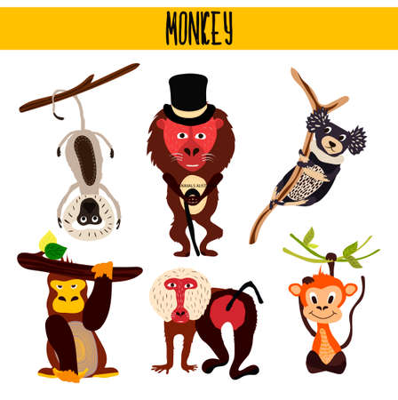 Cartoon Set of Cute Animals monkeys living in different parts of the world forests and tropical jungle .Macaque, gorilla, Yukari, vervet monkey, baboon, indri, chimpanzees . Vector illustration Illustration