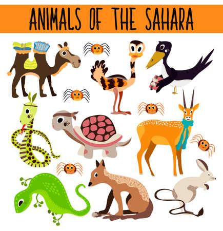 lagartija: Conjunto de animales de dibujos animados lindo y aves en los desiertos calientes aisladas sobre fondo blanco. Camello, tortuga, Chacal, lagarto, serpiente, avestruz, ara�a. Ilustraci�n vectorial