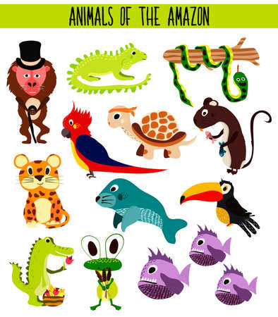 anaconda: Set of Cute cartoon Animals and birds of the Amazon areas of South America isolated on white background. Jaguar, crocodile, piranha, Anaconda, Toucan, monkey, parrot and iguana. Vector illustration Illustration