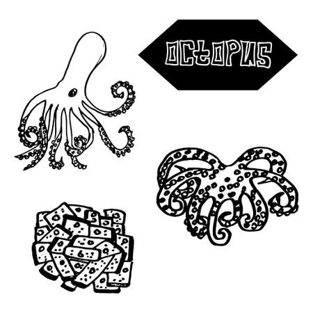 Seafood octopus Japanese and Spanish cuisine. Vector illustration