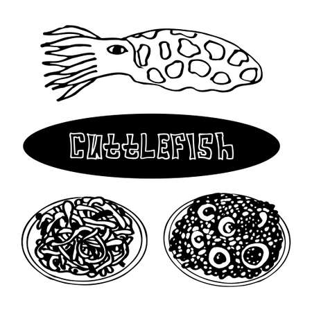 specialities: a set of sea delicacies from cuttlefish. risotto and pasta with cuttlefish. Vector Illustration
