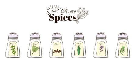 tarragon: Best seasoning for cheese. A collection of stand-alone web design elements on a white background