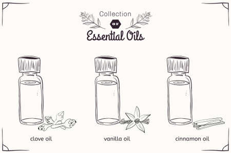 essential: A set of essential oils in black and white style: cloves, vanilla, cinnamon. Vector illustration Illustration