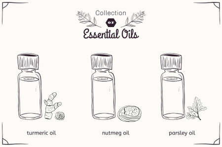 nutmeg: A set of essential oils in black and white style: nutmeg, parsley, turmeric. Vector illustration