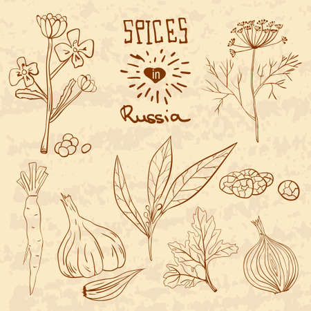 eart: Spices in Russia. A collection of distinctive herbs and spices for the Russians.