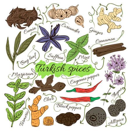 hierbas: Colorido conjunto de aislamiento de dibujado a mano hierbas y especias platos locales del mundo en el fondo blanco. Las flechas indican. Turquía. ilustración vectorial
