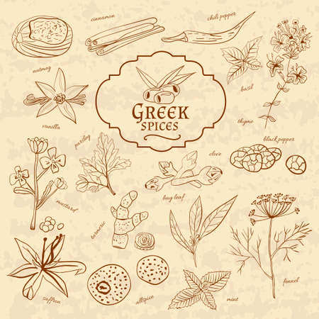 cuisines: Set of spices cuisines Greece on old paper in vintage style. Vector illustration