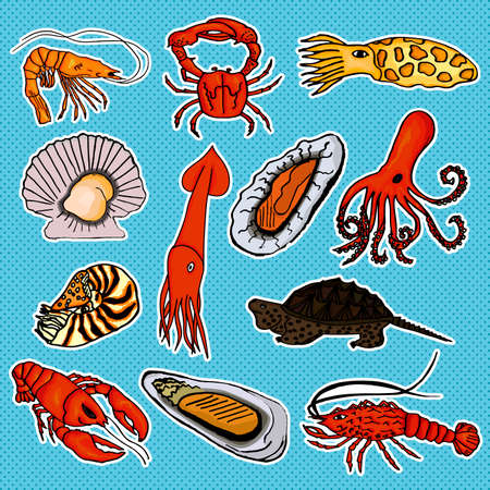 baby development: Collection of baby sea animals for the development of your baby. Vector illustration. Vector