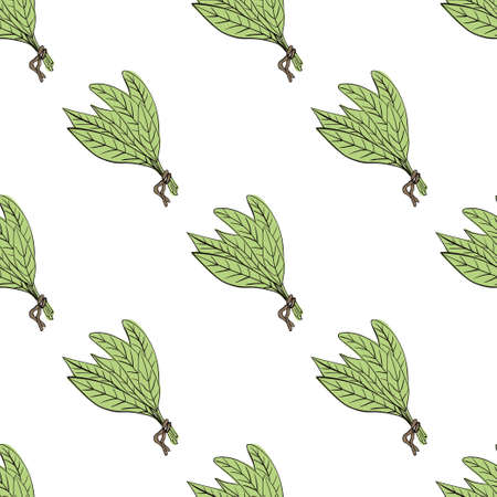 tarragon: Hand drawn vector colorful floral seamless pattern on white background Illustration