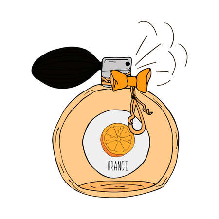 range fruit: Hand Drawn vector illustration of a perfume bottle with the scent of orange