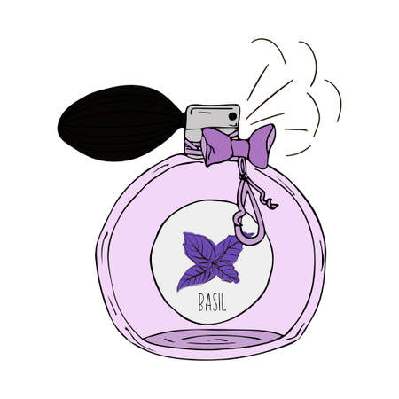 perfume bottle: Hand Drawn vector illustration of a perfume bottle with the scent of basil