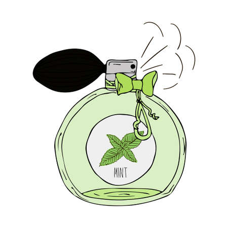 perfume bottle: Hand Drawn illustration of a perfume bottle with the scent of mint Illustration