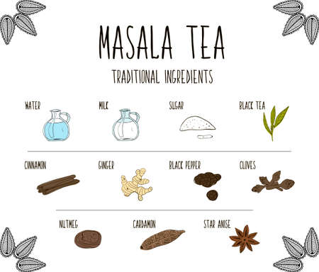 chai: Hand-sketched collection of elements of Ayurvedic spices are part of the ancient drink masala tea.