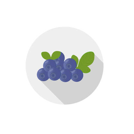 blueberry bushes: Isolated flat icon of vegetarian eating berries on a white background. Ripe wild blueberries Illustration