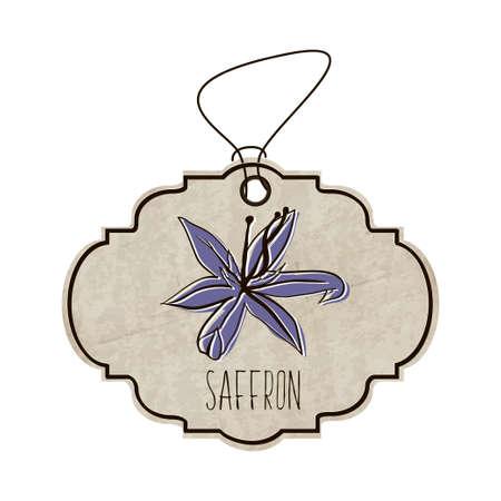 Hand drawn illustration de la collection d'épices et d'herbes. L'ancienne étiquette dans le style rétro avec coloré fleur parfumée de safran.