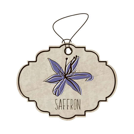 saffron: Hand drawn illustration from the collection of spices and herbs. The old label in retro style with colorful fragrant flower of saffron.