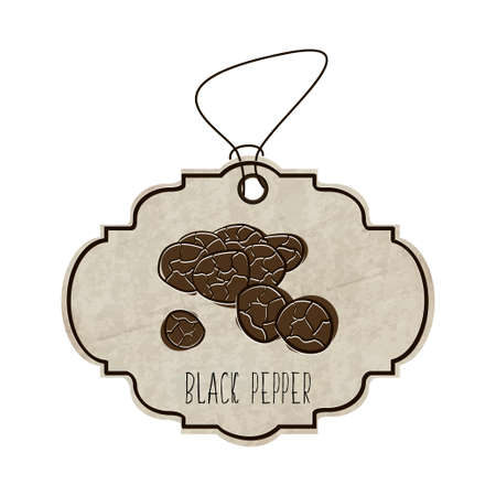 black pepper: Hand drawn illustration from the collection of spices and herbs. The old label in retro style with colorful fragrant black pepper. Illustration