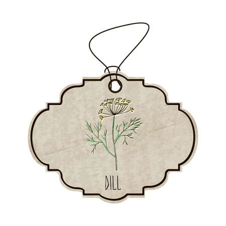 fragrant: Hand drawn illustration from the collection of spices and herbs. The old label in retro style with colorful fragrant dill.