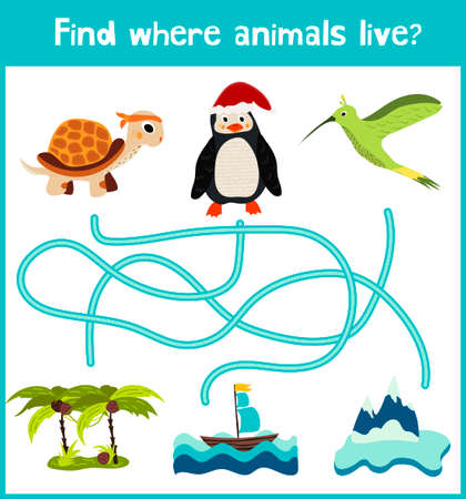 hummingbird: Fun and colorful puzzle game for childrens development find where a penguin, a turtle, and Hummingbird. Illustration