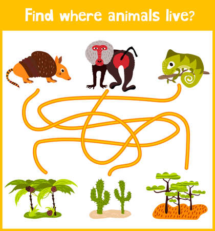 baboon: Fun and colorful puzzle game for childrens development find where the Armadillo, the baboon and the lizard is a chameleon. Illustration