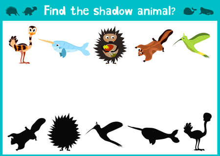 mirror image: Mirror Image five different cute tropical animals Visual Game. Task find the right answer black shadow animals.