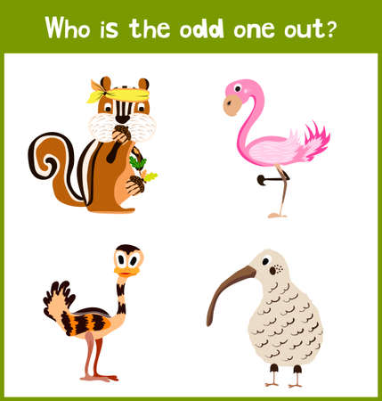 odd one out: Children colorful educational cartoon game puzzle page for childrens books and magazines on the theme get extra animal lovely birds among tropical forests. Vector illustration Illustration