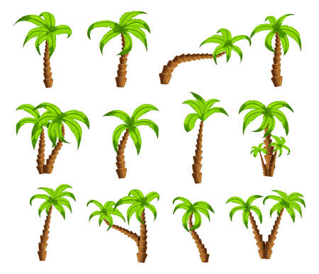 beautiful garden: Cartoon green palm trees on a white background. Set of isolated funny cartoon tropical trees patterns icons, for filling your sky scenes or the game interface backgrounds