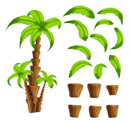 cartoon forest: Cartoon elements the palm trees on a white background. Set of isolated objects of a tropical tree trunk and green leaves set the forest songs funny cartoon for filling game interface background.Vector Illustration