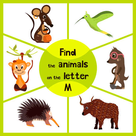 Funny learning maze game, find all 3 cute wild animals with the letter M, field mouse, macaque monkey tropical and insect-eating mole. Educational page for children. Vector illustration