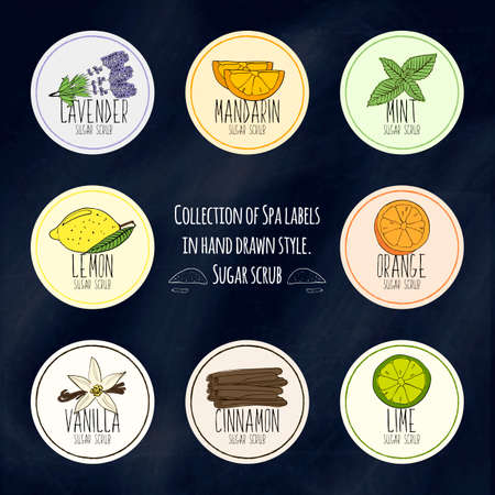 exfoliation: A large collection of labels for decorating packages from body scrubs and face in colorful hand drawn style. Vector illustration Illustration