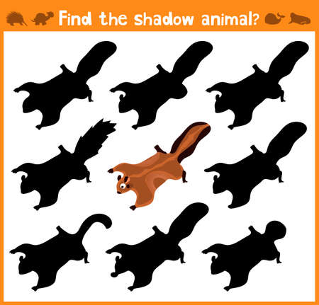 appropriate: Cartoon vector illustration of education will find appropriate shadow silhouette animal squirrel . Matching game for children of preschool age. Vector