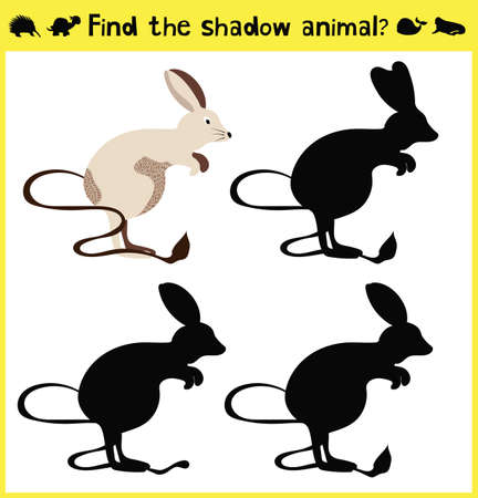 appropriate: Childrens developing game to find an appropriate shadow animal-jerboa. Vector illustration