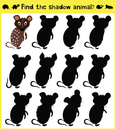 appropriate: Childrens developing game to find an appropriate shadow animal funny baby mouse. Vector illustration
