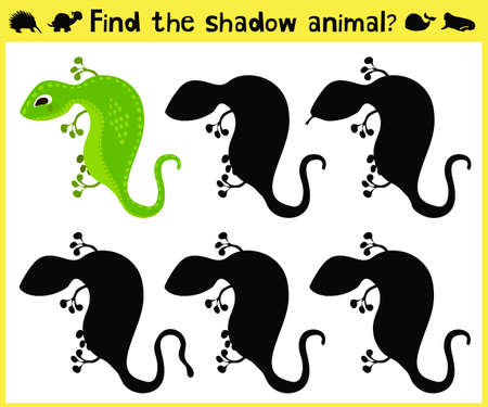 appropriate: Childrens developing game to find an appropriate shadow animal lizards. Vector illustration