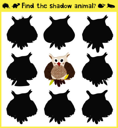 appropriate: Childrens developing game to find an appropriate shadow forest birds owl predator. Vector illustration Illustration