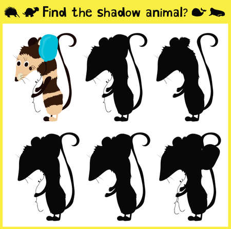 appropriate: Childrens developing game to find an appropriate shadow animal of the opossum. Vector illustration