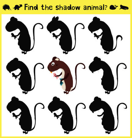 appropriate: Childrens developing game to find an appropriate shadow forest nutria. Vector illustration